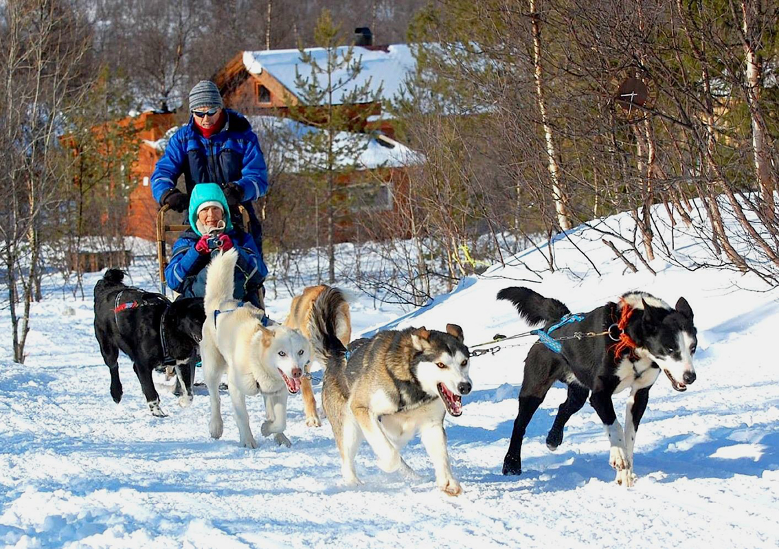 images/stories/norvegia/TromsoDogSledding01.jpg