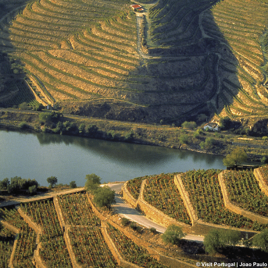 http://www.turismoitalianews.it/images/stories/portogallo/Douro_Foliage01.jpg