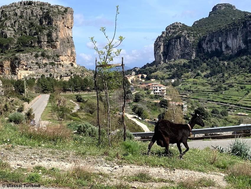 http://www.turismoitalianews.it/images/stories/sardegna/Ulassai_01.jpg