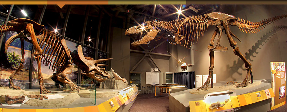 Il North Dakota Heritage Center and State Museum (foto State Museum ND)