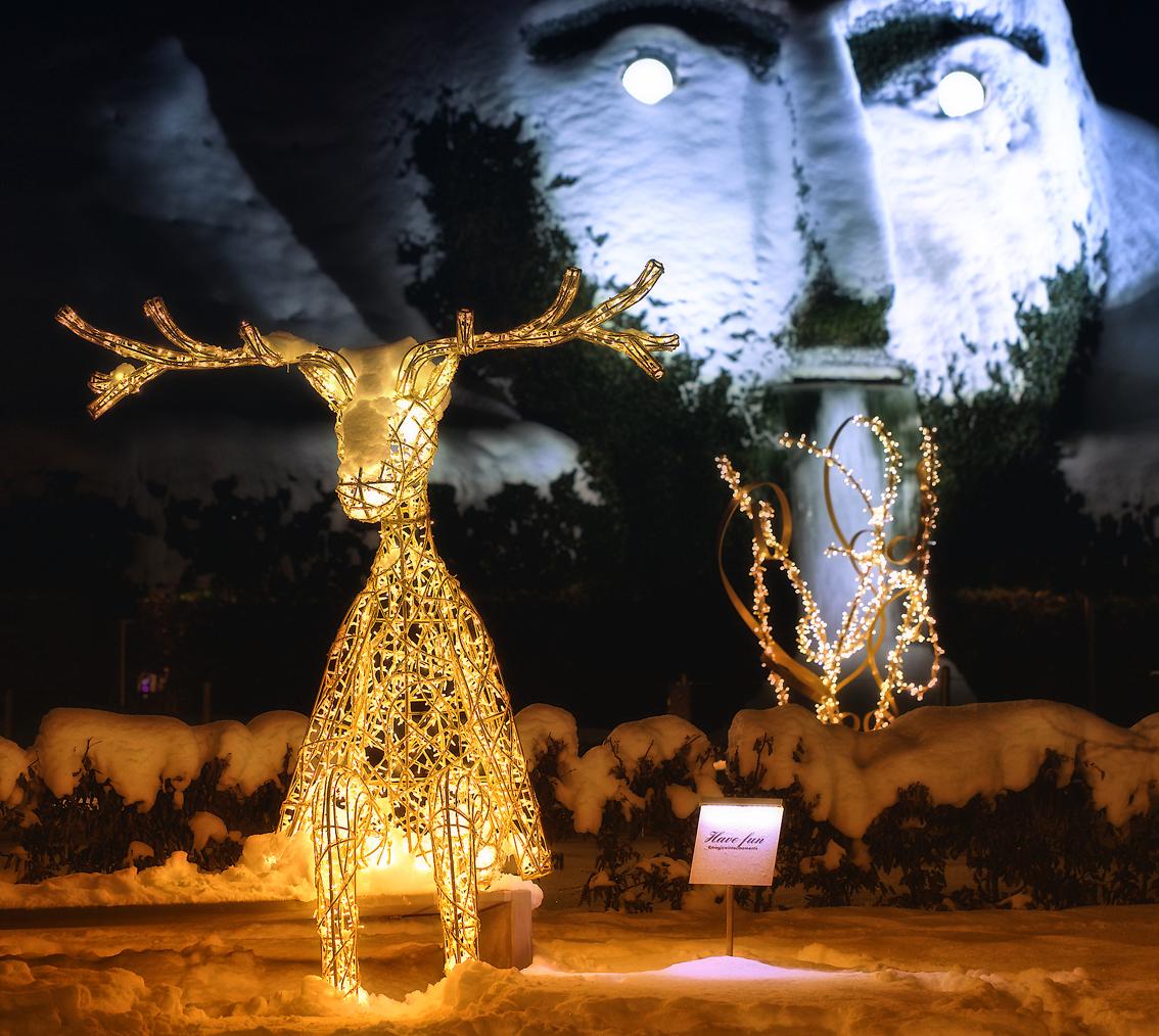 Regali Di Natale Swarovski.La Luce Dei Cristalli Swarovski Illumina Il Natale Di Hall Wattens
