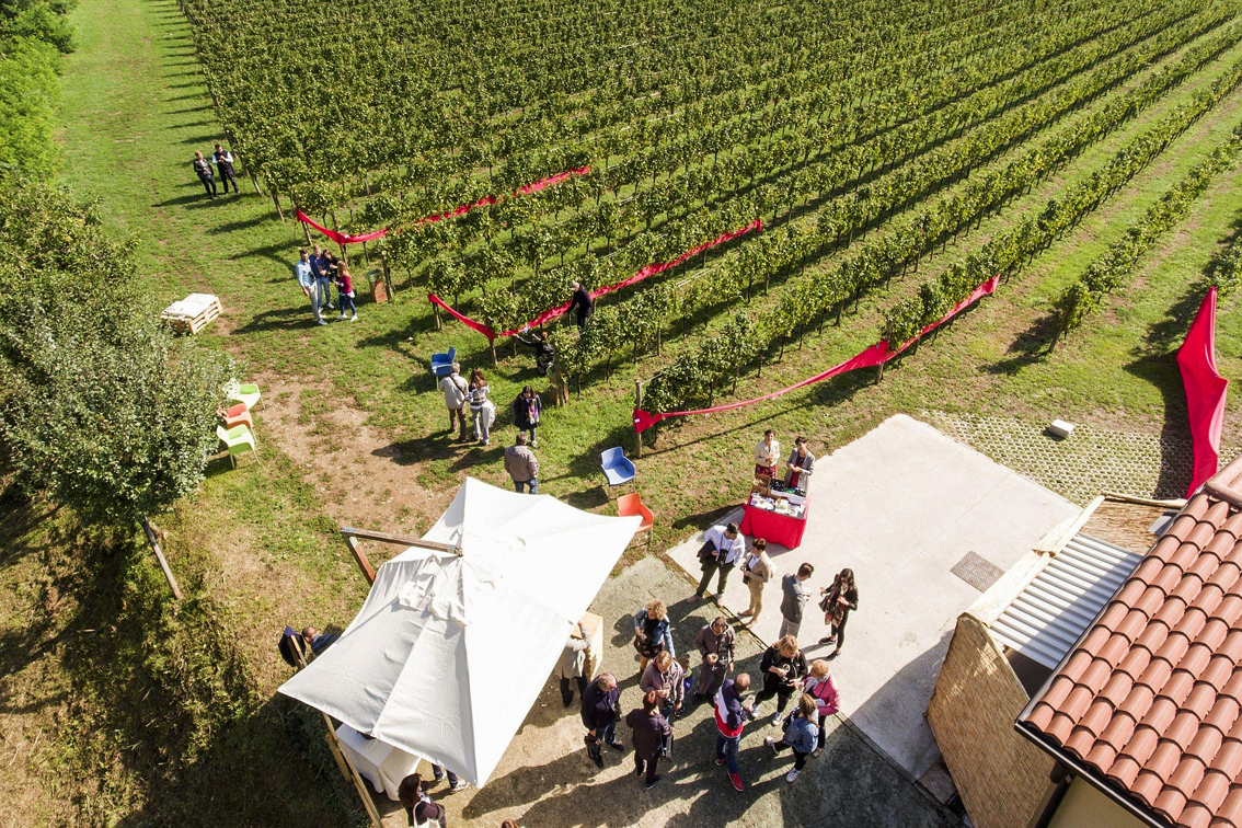 images/stories/varie_2019/Festival_Franciacorta_in_Cantina_01.jpg