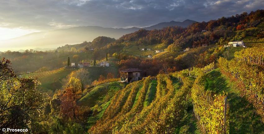 http://www.turismoitalianews.it/images/stories/veneto/CollineProsecco06_PhProsecco.jpg